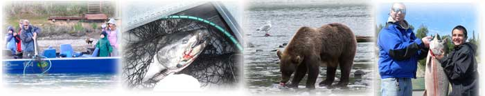 Kenai River Kings, Kasilof River Serenity, Cook Inlet Bounty
